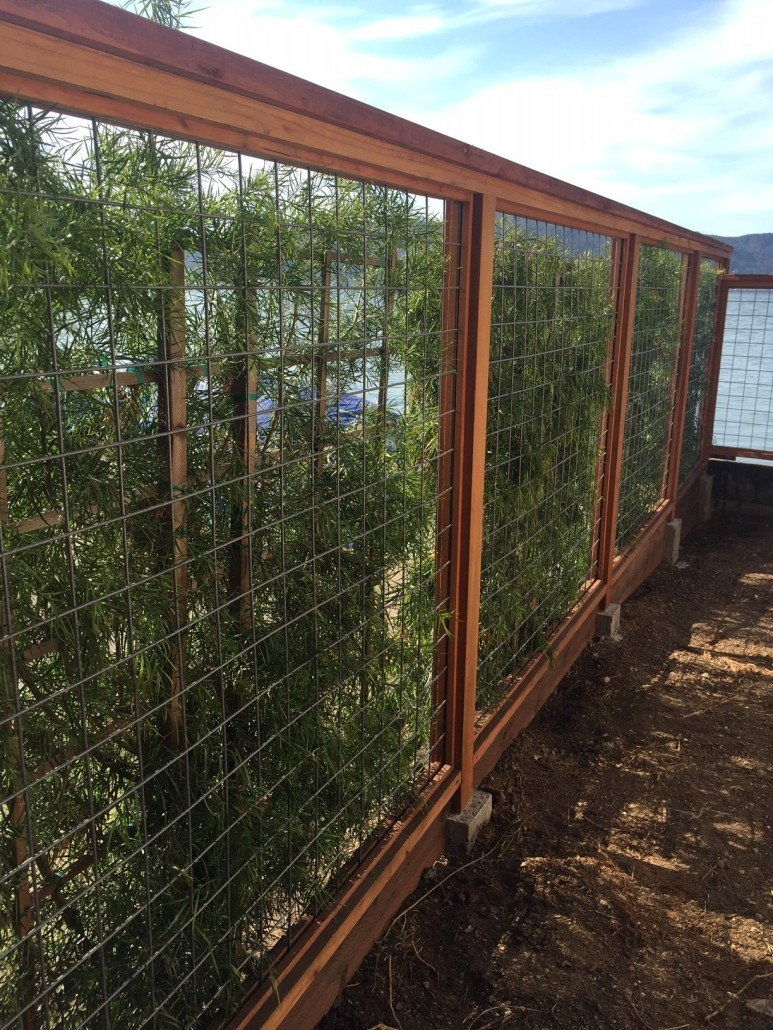 Wild Hog Railing   Weekes Forest Products