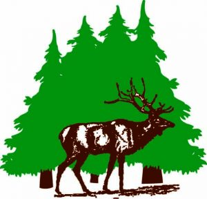 Elk Creek Logo